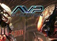 Avp Evolution